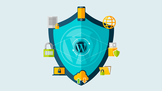 The WordPress Shield